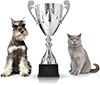 Champion Mobile Pet Grooming